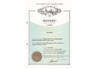 Патент №100674 Антенна